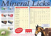 Mineral Licks